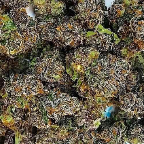 Voodoo Marijuana Online
