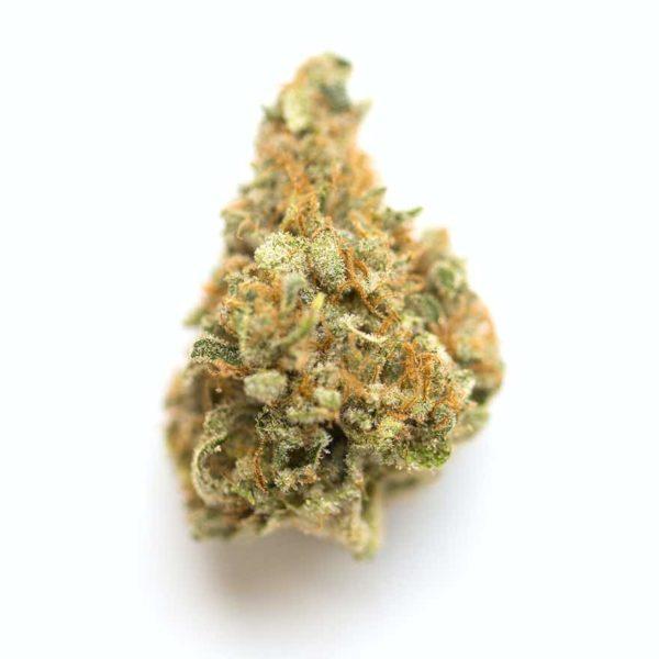 mango kush weed strain